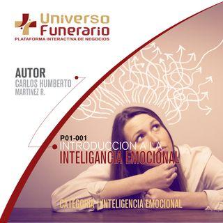 P13-001-INTRODUCION A LA INTELIGENCIA EMOCIONAL