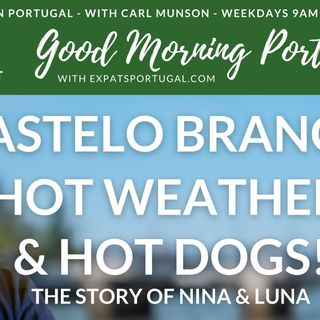 Dogs, hot dogs and Castelo Branco on Good Morning Portugal!