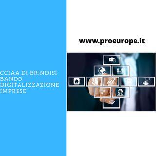 CCIAA Brindisi digitalizzazione