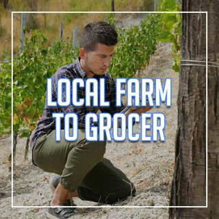 The Future of Food Sourcing | Forager