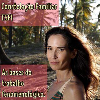 Constelação Familiar - TSFI - As bases do trabalho fenomenológico.