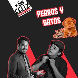 La Hora Feliz: Perros y Gatos