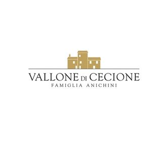 Vallone di Cecione - Francesco Anichini