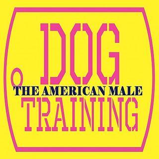 LA Knight Dog Training The American Male