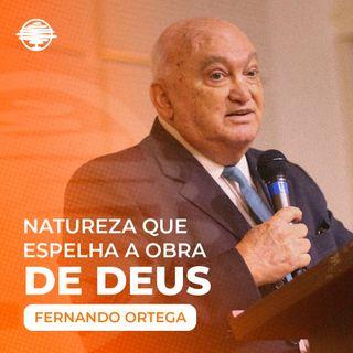 Natureza que espelha a obra de Deus