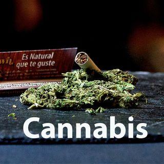 Franck, 31 ans, ex-accro au cannabis