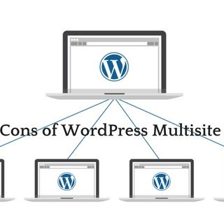 What is the use of WordPress Multisite