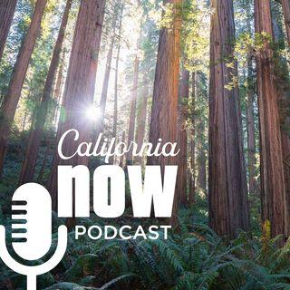 Redwood Coast, Favorite Hotels, Sacramento Dining