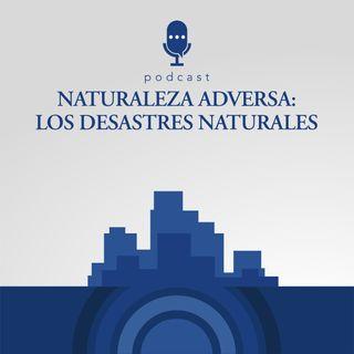 6. Naturaleza adversa - los desastres naturales