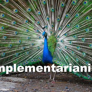 Complementarian Nagging Thoughts