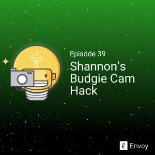 #39 - Shannon's Budgie Cam Hack