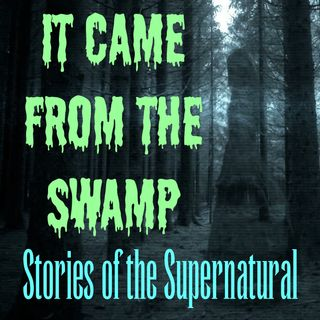 It Came From The Swamp | Interview with Arizona Tramp | Podcast