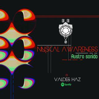 2. Valdés Haz- Musical Awareness (Abril)