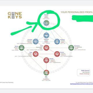 Chiave genetica 53 presente dal 7 al 12 luglio