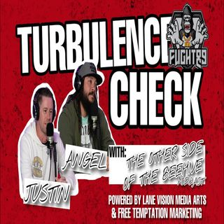 Turbulence Check w/ The Other Side of The Beehive Podcast