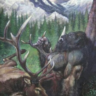 Hunter Witnesses a Sasquatch and a Moose go head to head.