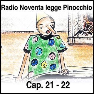 Pinocchio Capitoli 21-22