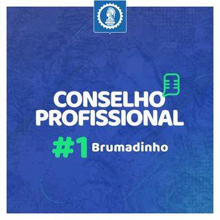 Conselho Profissional #1 - Brumadinho