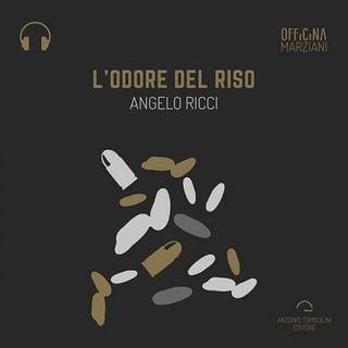 """L'odore del riso di Angelo Ricci - Anteprima audio """"Il Narratore"""""""