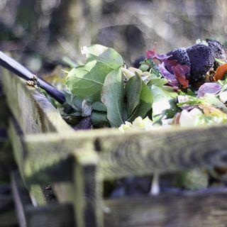 Dagli USA la conferma il compostaggio aiuta clima e suolo