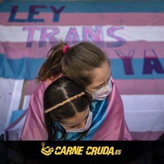 Ley trans: un debate para escuchar(se) (CARNE CRUDA #902)