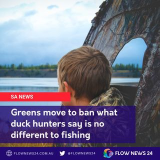 As SA Greens move to ban duck hunting, John Peek from Conservation & Hunting Alliance hits back
