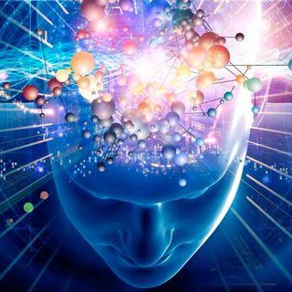 3.- Funcionamiento del cerebro