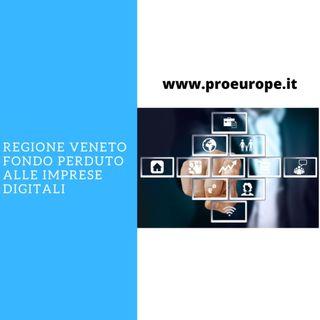 Imprese digitali del Veneto