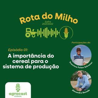 Rota do Milho - A importância do cereal para o sistema de produção