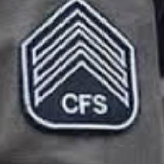 CFS à vista