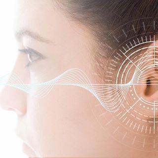 Salud de tus oídos