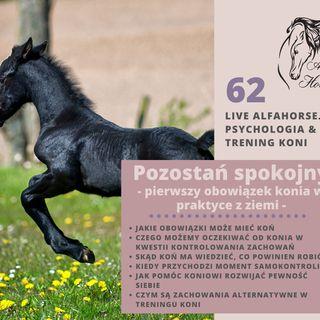 Live 62 Pozostań spokojny czyli Pierwszy obowiązek konia w - z ziemi