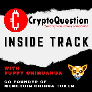 Inside Track with Puppy Chihuahua from Chihua Token