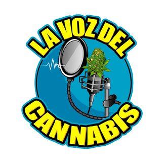 La Voz del Cannabis