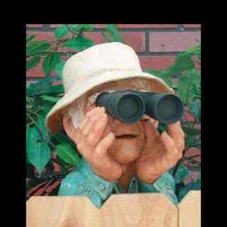 Nosey Old Lady Makes Unlawful Calls Over Public Database Access