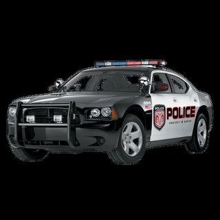 north carolina local crime