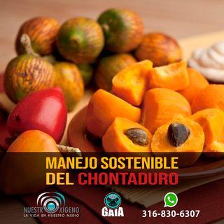 NUESTRO OXÍGENO Manejo sostenible  del chontaduro en Colombia - Ing. Agr. Luis Carlos Pardo Locarno
