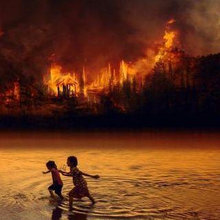 Perché l'Amazzonia brucia