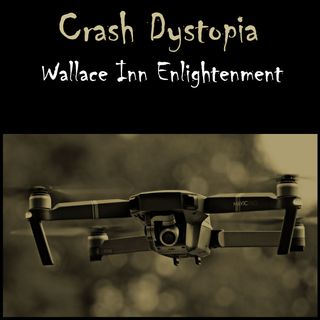Crash Dystopia Wallace Inn Enlightenment