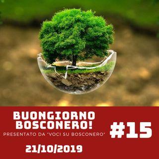 La giornata ecologica.. RISPETTO - Buongiorno Bosconero