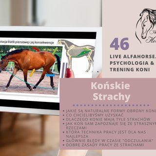 Live 46: Końskie Strachy