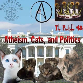 Atheism, Cats, and Politics