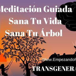🥰Meditación Guiada [SanaTE] 💡Árbol Genealógico [TRANGENERACIONAL]