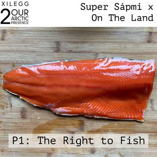 [Xilegg 2] Super Sápmi x On The Land: The Right to Fish