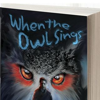 Author David C. Maloney discusses WHEN THE OWL SINGS on #ConversationsLIVE