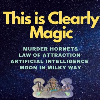 Murder Hornets equals Law of Attraction in Gematria