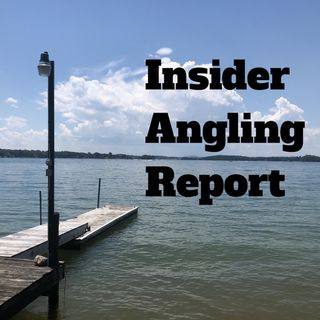 Insider Angling Reports