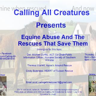 Equine Abuse and the Rescues That Save Them
