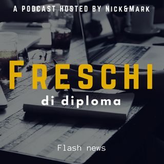 Episodio 04 - Flash news