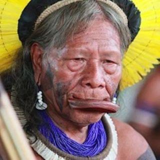 La soluzione che il sinodo sull'Amazzonia non darà mai: torniamo a celebrare le 4 tempora per i ''problemi ecologici'' e la mancanza di voca
